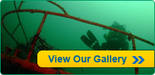 Visit Our Gallery